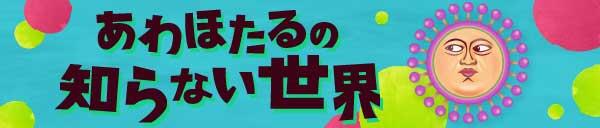 毎週水・金開催!!【あわほたるの知らない世界】
